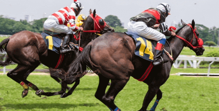 tote betting definition