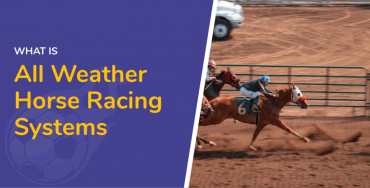 All Weather Horse Racing Systems